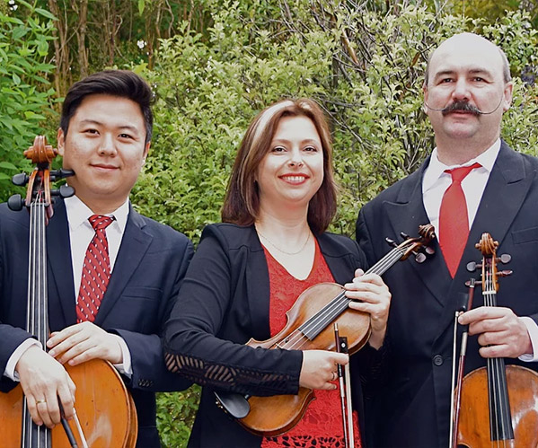 Our talented NZ musicians Auckland Trio