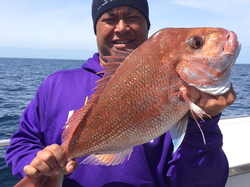 Auckland Fishing Charters - Charter Boat Fishing Trips