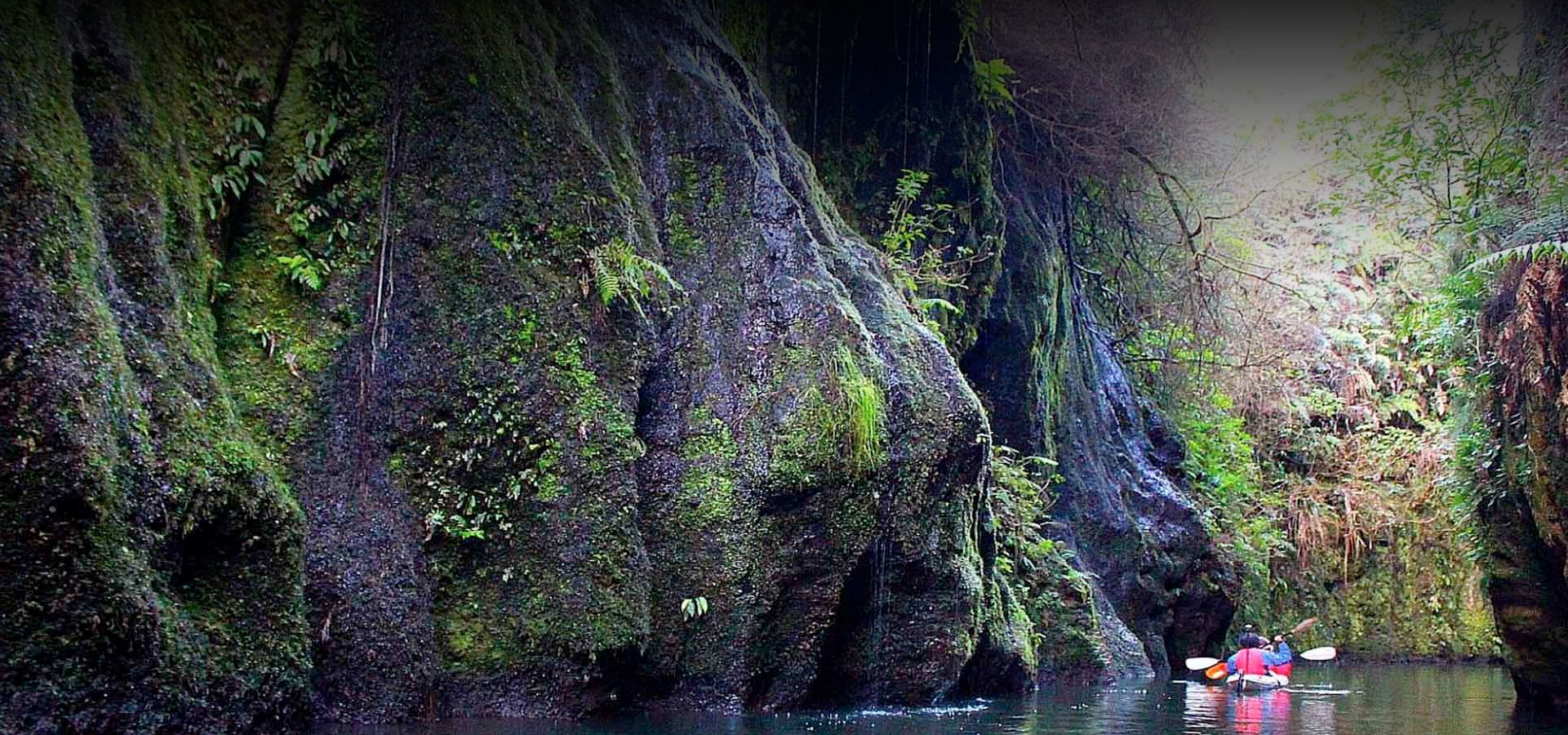 Thermal Hot Pools New Zealand tours
