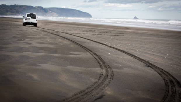 Muriwai Beach - Driving Safely on Auckland Beaches