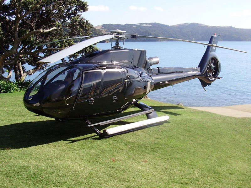Waiheke Island Tours - Arrival by Helicopter